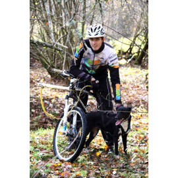 Stage 3 jours de cani-VTT avec Rémy Absalon de Irwego