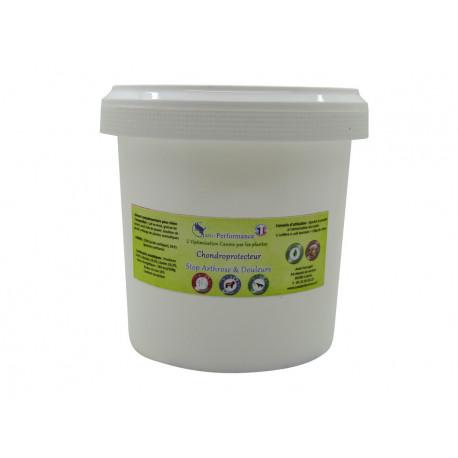Chondroprotecteur Articulations